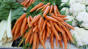 Φρέσκα οργανικά καρότα στην τοπική αγορά: Λυών, Γαλλία Στοκ Εικόνες