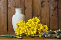 Φρέσκα λουλούδια περικοπών Στοκ εικόνα με δικαίωμα ελεύθερης χρήσης