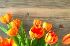 Φρέσκα λουλούδια τουλιπών ανθοδεσμών Στοκ φωτογραφία με δικαίωμα ελεύθερης χρήσης