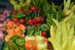 Φρέσκα πιπέρια για την πώληση Στοκ φωτογραφίες με δικαίωμα ελεύθερης χρήσης