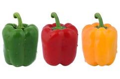 φρέσκα πιπέρια Στοκ φωτογραφίες με δικαίωμα ελεύθερης χρήσης