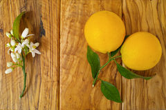 Φρέσκα πορτοκάλια με τα φύλλα και πορτοκαλιά λουλούδια δέντρων στο ξύλο ελιών Στοκ Φωτογραφίες