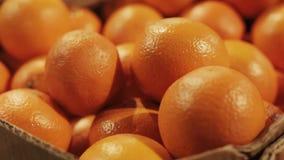 Φρέσκα πορτοκάλια σε ένα καλάθι σε μια υπεραγορά που επιλέγεται από το οργανικό αγρόκτημα ή που αγοράζεται από την υπεραγορά Εκλε απόθεμα βίντεο