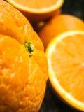 φρέσκα πορτοκάλια ώριμα Στοκ Εικόνες