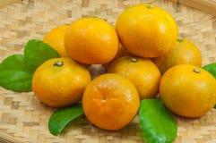 φρέσκα πορτοκάλια Στοκ φωτογραφία με δικαίωμα ελεύθερης χρήσης