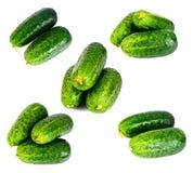 Φρέσκα πράσινα αγγούρια που απομονώνονται στο άσπρο υπόβαθρο Στοκ Φωτογραφία