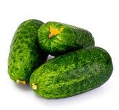 Φρέσκα πράσινα αγγούρια που απομονώνονται στο άσπρο υπόβαθρο Στοκ Εικόνες