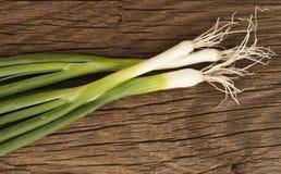 φρέσκα πράσινα κρεμμύδια Στοκ Εικόνες