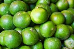 φρέσκα πράσινα λεμόνια Στοκ Φωτογραφία