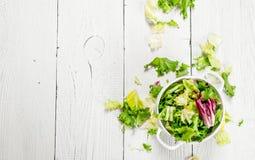 Φρέσκα πράσινα σαλάτας σε ένα κύπελλο Στοκ εικόνες με δικαίωμα ελεύθερης χρήσης