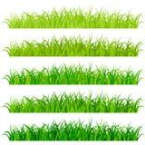 Φρέσκα πράσινα σύνορα χλόης καθορισμένα Στοκ Εικόνες