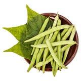 Φρέσκα πράσινα φασόλια και φύλλα σε ένα πιάτο αργίλου σε έναν πίνακα στοκ εικόνες