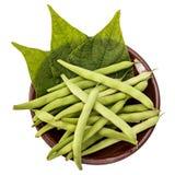 Φρέσκα πράσινα φασόλια και φύλλα σε ένα πιάτο αργίλου σε έναν πίνακα στοκ φωτογραφίες με δικαίωμα ελεύθερης χρήσης
