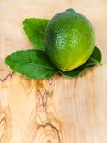 Φρέσκα πράσινα φρούτα ασβέστη kaffir με τα φύλλα εν πλω Στοκ Φωτογραφία