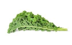 Φρέσκα πράσινα φύλλα κατσαρού λάχανου Στοκ Φωτογραφία