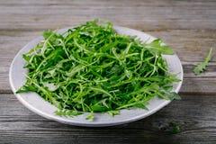 Φρέσκα πράσινα φύλλα σαλάτας arugula σε ένα κύπελλο σε ένα ξύλινο υπόβαθρο Στοκ Εικόνες