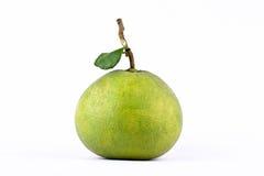 Φρέσκα πράσινα pomelos και pomelo φύλλων στα άσπρα τρόφιμα φρούτων υποβάθρου υγιή που απομονώνονται Στοκ φωτογραφία με δικαίωμα ελεύθερης χρήσης