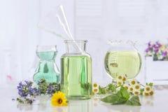 Φρέσκα πράσινες εγκαταστάσεις και λουλούδια Aromatherapy botle του ουσιαστικού πετρελαίου Στοκ Εικόνα