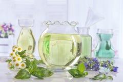 Φρέσκα πράσινες εγκαταστάσεις και λουλούδια Aromatherapy botle του ουσιαστικού πετρελαίου Στοκ φωτογραφία με δικαίωμα ελεύθερης χρήσης