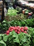 Φρέσκα προϊόντα αγοράς αγροτών Στοκ εικόνες με δικαίωμα ελεύθερης χρήσης