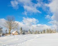 Φρέσκα σημάδια ποδιών το χειμώνα, Gorce, Πολωνία Στοκ Εικόνες