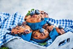 Φρέσκα σπιτικά εύγευστα muffins βακκινίων στοκ εικόνες με δικαίωμα ελεύθερης χρήσης