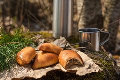 Φρέσκα σπιτικά patty κρέατος κέικ στο δάσος στοκ εικόνα με δικαίωμα ελεύθερης χρήσης