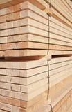 φρέσκα στηρίγματα ξύλινα Στοκ Εικόνα