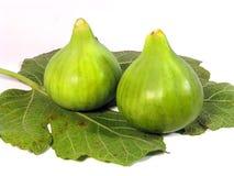 Φρέσκα σύκα πράσινα Στοκ Εικόνα