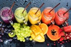 Φρέσκα τροπικά φρούτα καταφερτζήδων χυμών χρώματος πολυ Στοκ Εικόνες
