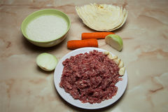 Φρέσκα τρόφιμα για να προετοιμάσει τους οκνηρά ρόλους λάχανων ή τα κεφτή του βόειου κρέατος, στοκ εικόνα