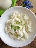 Φρέσκα τυρί και γάλα εξοχικών σπιτιών Στοκ φωτογραφία με δικαίωμα ελεύθερης χρήσης