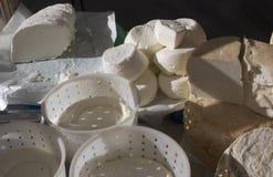 Φρέσκα τυριά αιγών (Piedmont, Ιταλία) στοκ φωτογραφίες