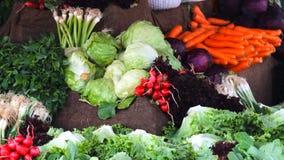Φρέσκα υγιή βιο μάραθο και καρότα στη Ιστανμπούλ απόθεμα βίντεο