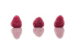 φρέσκα υγιή μούρα που απομονώνονται στο λευκό Στοκ Εικόνα