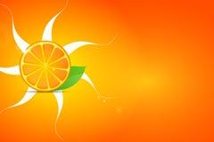 Φρέσκα φρούτα πορτοκαλιών με τα πράσινες φύλλα και τις φέτες Στοκ Φωτογραφία