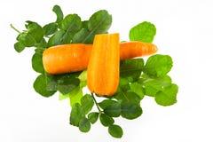 Φρέσκα φύλλα ασβέστη kaffir, καρότο που απομονώνεται Στοκ Εικόνες