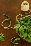 Φρέσκα φύλλα σαλάτας rucola στο κύπελλο Στοκ Φωτογραφία