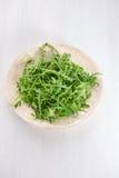 Φρέσκα φύλλα arugula στο πιάτο Στοκ εικόνα με δικαίωμα ελεύθερης χρήσης