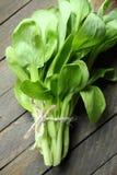 Φρέσκα φύλλα bok choy για τη σαλάτα Στοκ Εικόνα