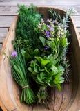 Φρέσκα χορτάρια από τον κήπο στο ξύλινο καλάθι: φρέσκα κρεμμύδια, μέντα, θυμάρι, ρ στοκ φωτογραφία