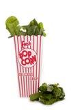 Φρέσκα χυσίματα σπανακιού από popcorn το εμπορευματοκιβώτιο Στοκ Εικόνες