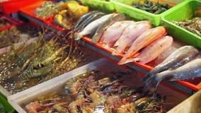 Φρέσκα ψάρια θάλασσας, γαρίδες, ακανθωτοί αστακοί, οστρακόδερμα στο μετρητή στην αγορά θαλασσινών στην Ασία φιλμ μικρού μήκους