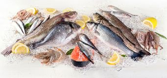 Φρέσκα ψάρια και θαλασσινά στο άσπρο ξύλινο υπόβαθρο κατανάλωση υγιής στοκ εικόνα με δικαίωμα ελεύθερης χρήσης