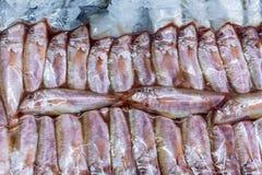 Φρέσκα ψάρια κλυπεών στον πάγο στην αγορά 1 τροφίμων στοκ εικόνες