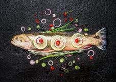 Φρέσκα ψάρια με την εύγευστη τεμαχισμένη καρύκευση έτοιμη για το νόστιμο μαγείρεμα στο σκοτεινό υπόβαθρο, τοπ άποψη Στοκ Εικόνες