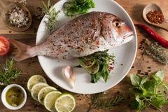 Φρέσκα ψάρια με την πλήρωση χορταριών Στοκ Εικόνες