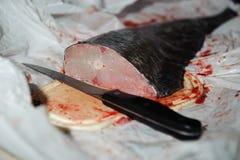 Φρέσκα ψάρια, περικοπή στα κομμάτια Στοκ εικόνες με δικαίωμα ελεύθερης χρήσης
