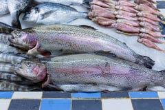 Φρέσκα ψάρια πεστροφών στον πάγο στην αγορά 1 τροφίμων στοκ φωτογραφίες με δικαίωμα ελεύθερης χρήσης