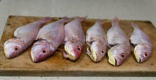 Φρέσκα ψάρια σε έναν τέμνοντα πίνακα Στοκ Εικόνες